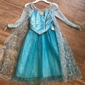 Disney parks Elsa dress nwt